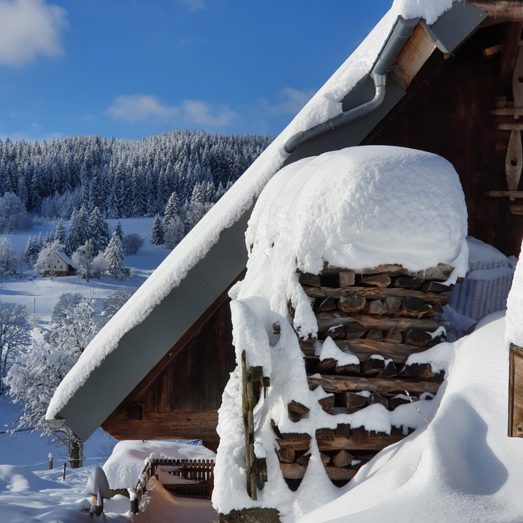 Rudenberg-Winter 2021